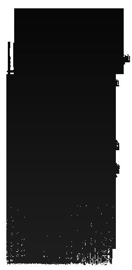 Iskra Profile